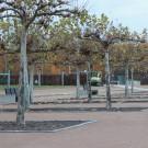 Platanenhain-Olbersdorf_025